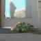 CBS 4 Denver features Callie's Backyard
